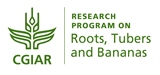 Root, Tubers and Banana Logo